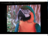 ADJ AV6 LED Screen Panel
