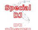 Specialized DJ