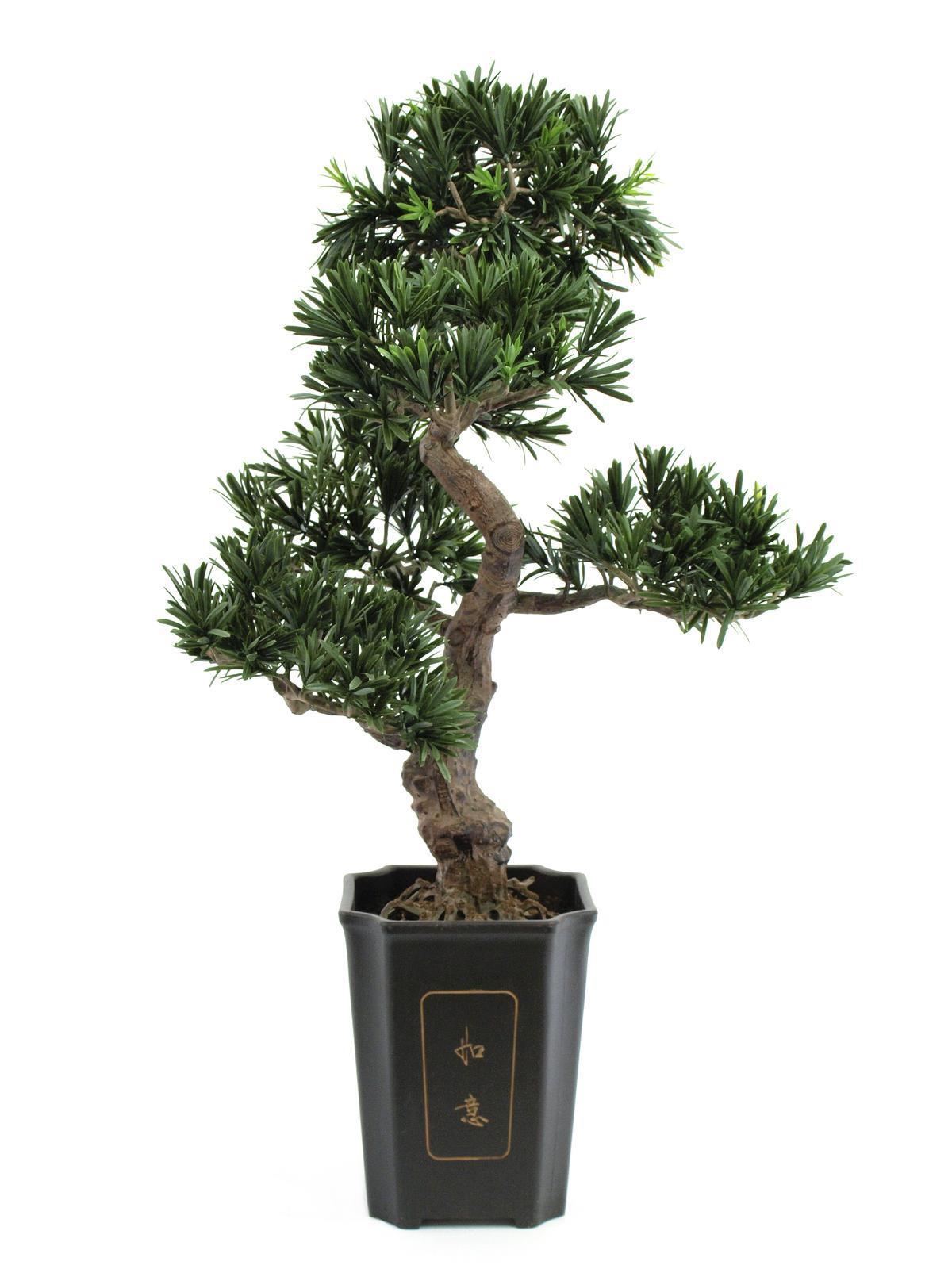 Europalms Bonsai Podocarpus, 80cm - Kunstpflanze