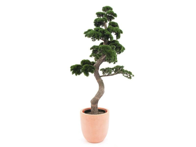 Europalms Bonsai-Pinie ca. 169cm Kunstpflanze