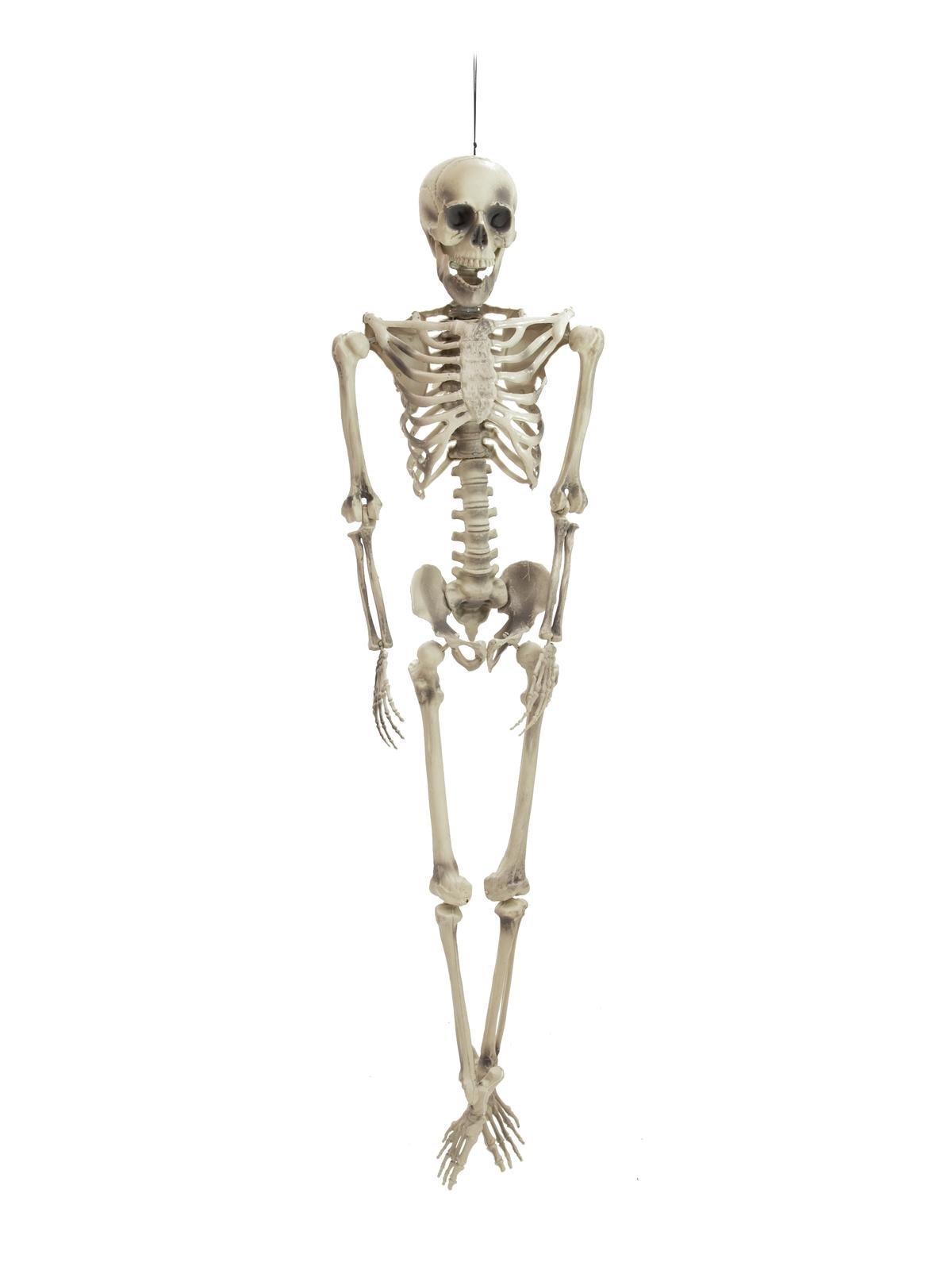 Europalms Halloween-Figur Skelett